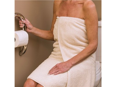Invisia Toilet Roll Holder With Integrated Safety Support