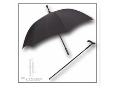 The Umbrella Cane Combo