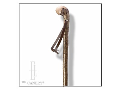 English Hazelwood Walking Stick