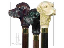 Labrador retriever head walking stick